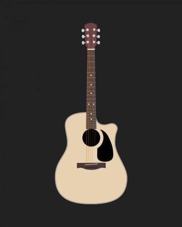 Ovation guitar