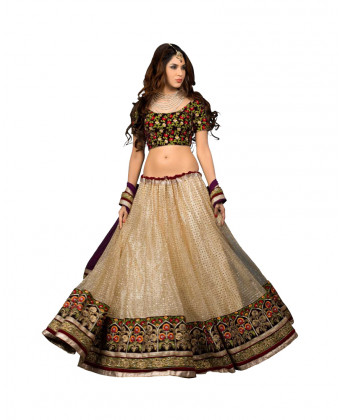Treditional  Choli
